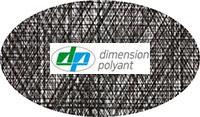 Dimension-Polyant
