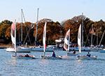 Foxer Fleet